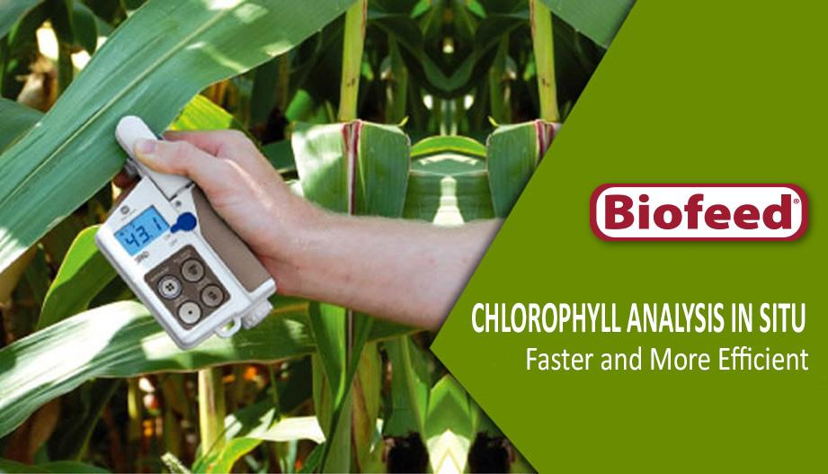 Chlorophyll Analysis in Situ