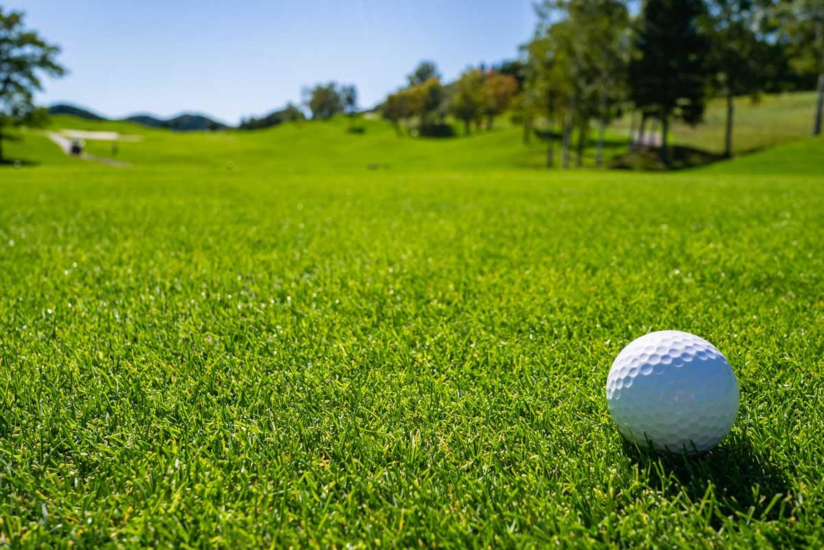 Professional Golf Turf